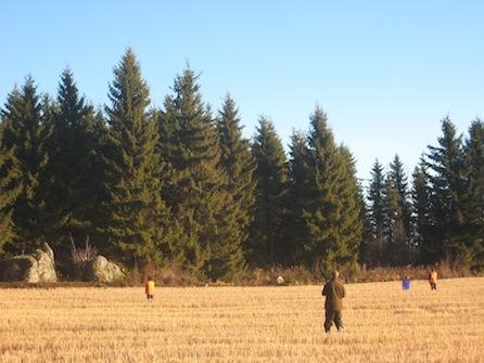 Kokenut metsästäjä valikoi fasaanijahdissa ammuttavaksi aina korkeammalla lentäviä lintuja.